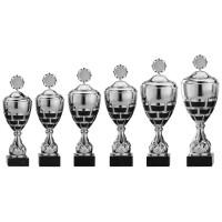Leuke grote sportbekers voor winnaars