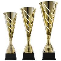 Gouden sportbekers voor kampioenen